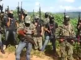 """Este año, ciudades del estado de Michoacán han visto sus niveles de violencia aumentar debido, en gran parte, a los enfrentamientos. Los Viagras son, 'El grupo más sanguinario y peligroso' de Michoacán Que han tenido dos organizaciones criminales: El Cártel de Jalisco Nueva Generación (CJNG) y el cártel de Los Viagras. Los Viagras se han consolidado como uno de los grandes retos para el gobierno de Silvano Aureoles, quien en 2017 lo definió como """"el grupo más sanguinario y peligroso"""" de los cárteles que operan en el estado. Medios locales apuntaron el municipio de Buenavista, al oeste de Michoacán, como base de operaciones del grupo, donde en julio de 2018, el alcalde de Morena, Eliseo Delgado Sánchez, fue asesinado a las pocas semanas de haber sido electo. Este grupo, oriundo del municipio michoacano de Huetamo, está conformado por los siete hermanos Sierra Santana, reconociendo como líder y cabecilla a Nicolás Sierra Santana """"El Gordo"""", cuyo nombre se debe a que uno de los hermanos, Carlos Sierra Santana, solía peinarse con picos mirando hacia arriba que fijaba con una cantidad excesiva de gel, de acuerdo con La Voz de Michoacán. Los Viagras comenzaron a operar como grupo de autodefensas en 2014, subordinados al entonces líder de las mismas en el estado, Estanislao Beltrán """"Papá Pitufo"""" y en un inicio, según medios locales, incluso colaboraron con cárteles como la Familia Michoacana, el Cártel Jalisco Nueva Generación- su actual rival-, y con el entonces comisionado para la Seguridad de Michoacán, Alfredo Castillo Cervantes, quien pidió su ayuda para para localizar y capturar a Servando Gómez """"La Tuta"""", líder de Los Caballeros Templarios. Los hermanos Sierra Santana comenzaron a involucrarse en el negocio de la producción y traslado de metanfetaminas, lo que se ha señalado como parte del motivo de la actual confrontación con el CJNG."""